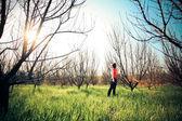 Parkta güzel bir kadın — Stok fotoğraf