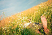 Young adult man in spring grass — Stock fotografie