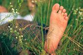 Ung vuxen man i fjädra gräs — Stockfoto