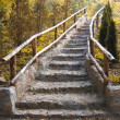 Stairs in the fall — Stock Photo