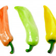 Three colorful peppers — Stock Photo
