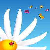 Lieveheersbeestje over het witboek — Stockvector