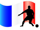 France footballer — Stock Vector