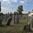 Jewish cemetery — Stock Photo #1661598