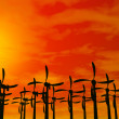 Wind electric power — Stock Photo