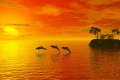 Dolphins silhouette — Stock Photo