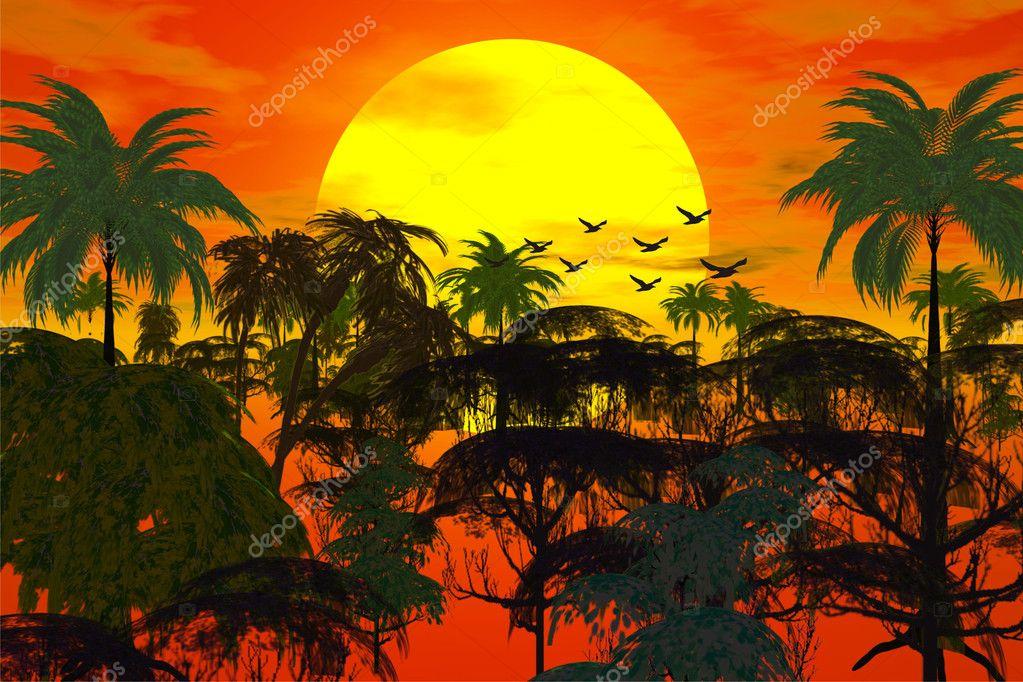 ジャングルに沈む夕日– ストック画像