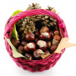 Basket with chestnut — Stockfoto