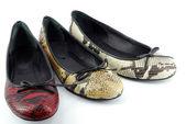 Woman ballet flat shoes — Stock Photo