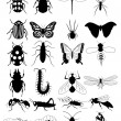 Royalty-Free Stock Vector Image: Bug silhouette