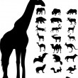 Wild animals icons and silhouette — Stock Vector
