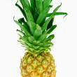 Pineapple — Stockfoto #2622818