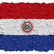 National Flag Paraguay — Stock Photo #1650171