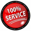 Foto de Stock  : 100% Service Button