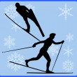 Stock Photo: Winter game button nordic combined
