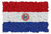 National Flag Paraguay — Stock Photo