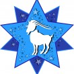 Zodiac sign capricorn — Stock Vector