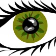 Green Eye with lashes — Foto Stock