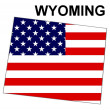 USState Map Wyoming — Stockfoto #1768724