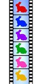 Easter bunnies on film reel — Stock Photo
