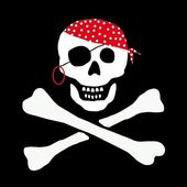 Skull and Bones Pirate Flag — Stock Photo