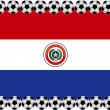 Soccer Paraguay — Stock Vector