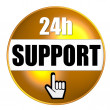 Stock Photo: 24h Support Button