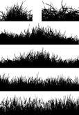 Grass silhouette — Stock Vector