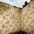 Stock Photo: Ruined walls and wallpaper pattern