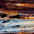 Royalty-Free Stock Photo: Rusty Metal detail