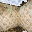 Ruined walls with retro wallpaper — Stock Photo