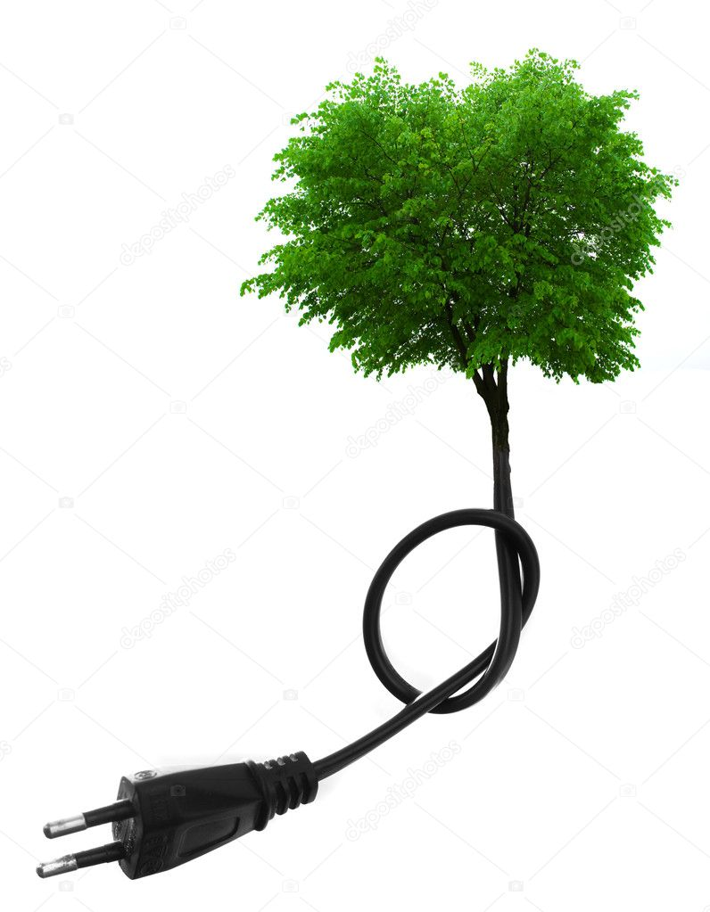 Green tree growing from electric cable  isolated on white. Renewable energy and ecology concept — Stock Photo #1686806