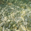Stock Photo: Underwater stones