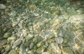 Underwater stones — Stock Photo