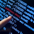 Virus in program code - Stock Photo