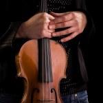 Classic Music instrument - violin — Stock Photo