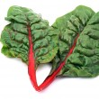 Rainbow chard — Stock Photo