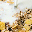 Muesli with milk — Stock Photo