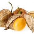 Stock Photo: Physalis Fruit