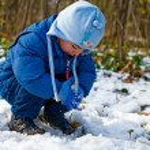 第一场雪 — 图库照片