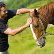 Royalty-Free Stock Photo: Young Man and Horse