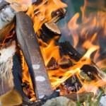 Campfire — Stock Photo #1760889