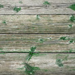 Old Wooden Planks — Stock Photo