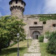 Stock Photo: Fortification