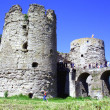 Ruins a old castle — Stock Photo