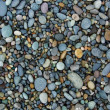 Shiny Wet Multicolored Pebbles on Beach — Stock Photo #2088801