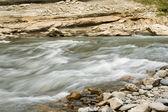 River stream — Stock Photo