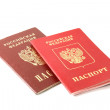 Постер, плакат: Two passports of Russian Federation