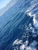 Mer adriatique — Photo