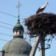 Nest of stork near the rural church - Stock Photo